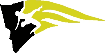 A Pioneer High School sports logo